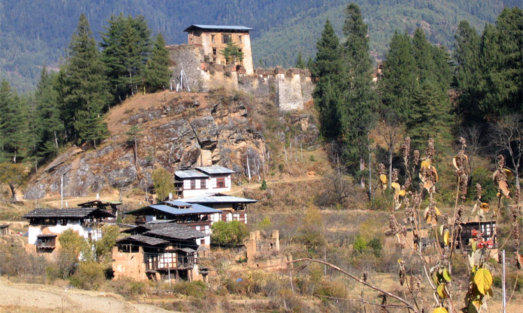 Sightseeing at Paro: Drugyal Dzong