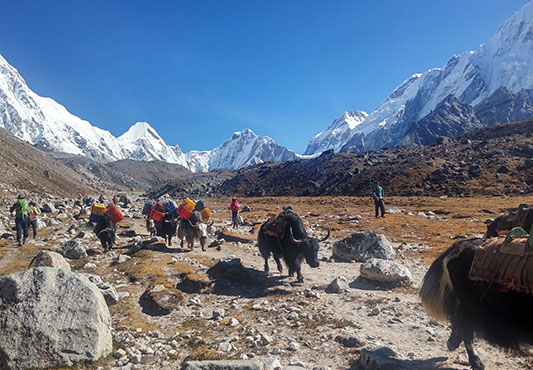 Sherpa Village Lodge Trek