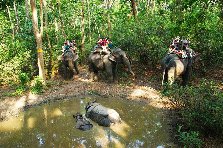 Chitwan-National-Park-2