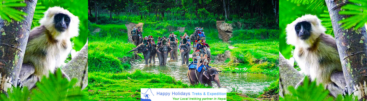 Top 6 Most Admired And Favoured National Park Tours In Nepal